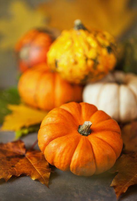 childrens thanksgiving prayer