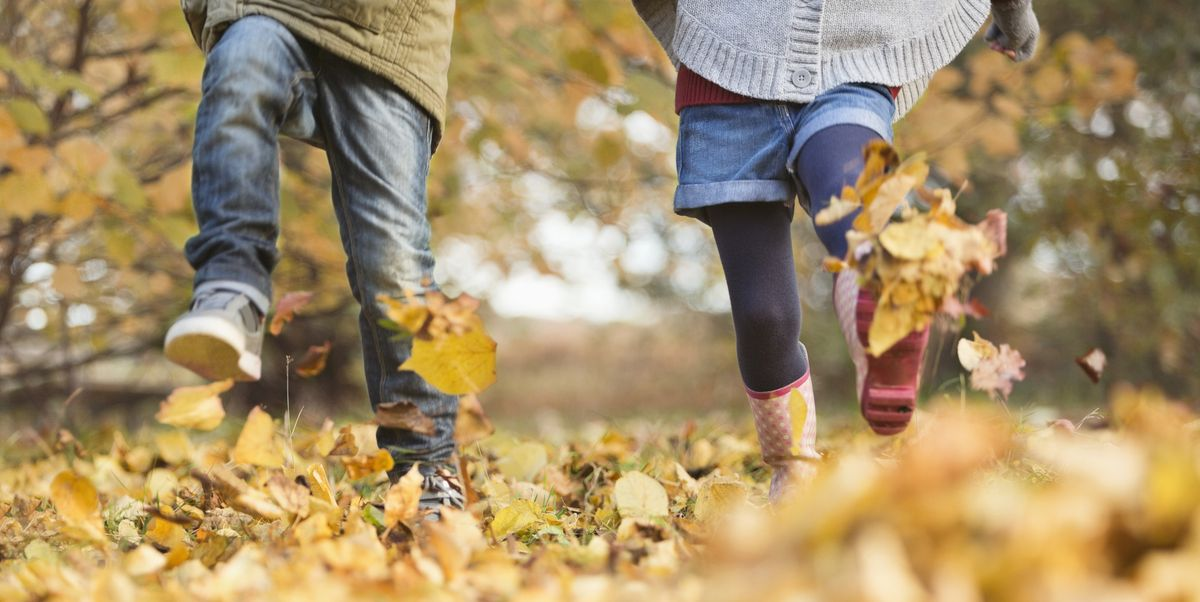 7 terrific ideas for October half term holidays in the UK