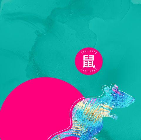 12生肖 鼠