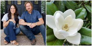 chip and joanna gaines magnolia meaning