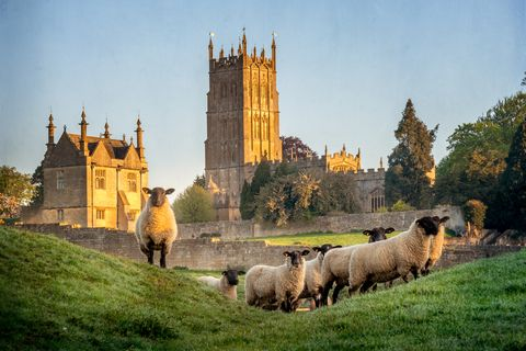 best cotswolds walks