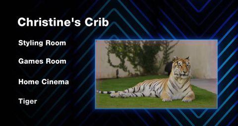 christine quinn mtv cribs tiger
