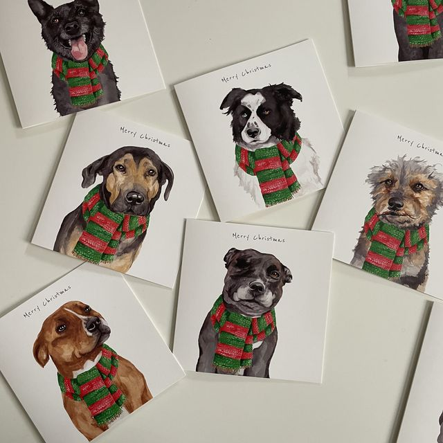 streetvet launches christmas cards to support pet homelessness
