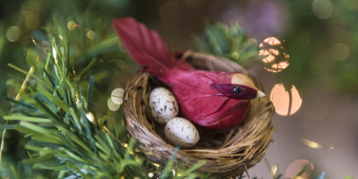 The Meaning Behind The Bird S Nest Christmas Tree Ornament Tradition