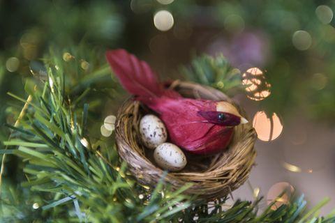 bird nest christmas tree ornament