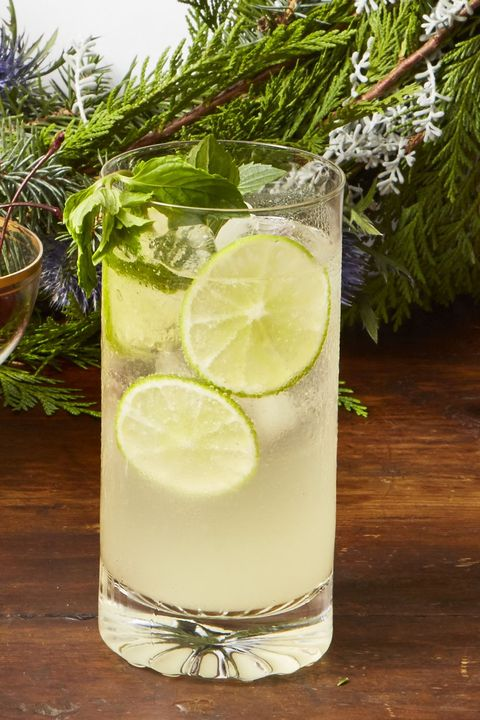 christmas dinner ideas   sparkling wine mojito punch