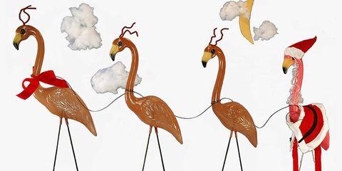 Bird, Greater flamingo, Flamingo, Water bird, Beak, Art, Illustration,