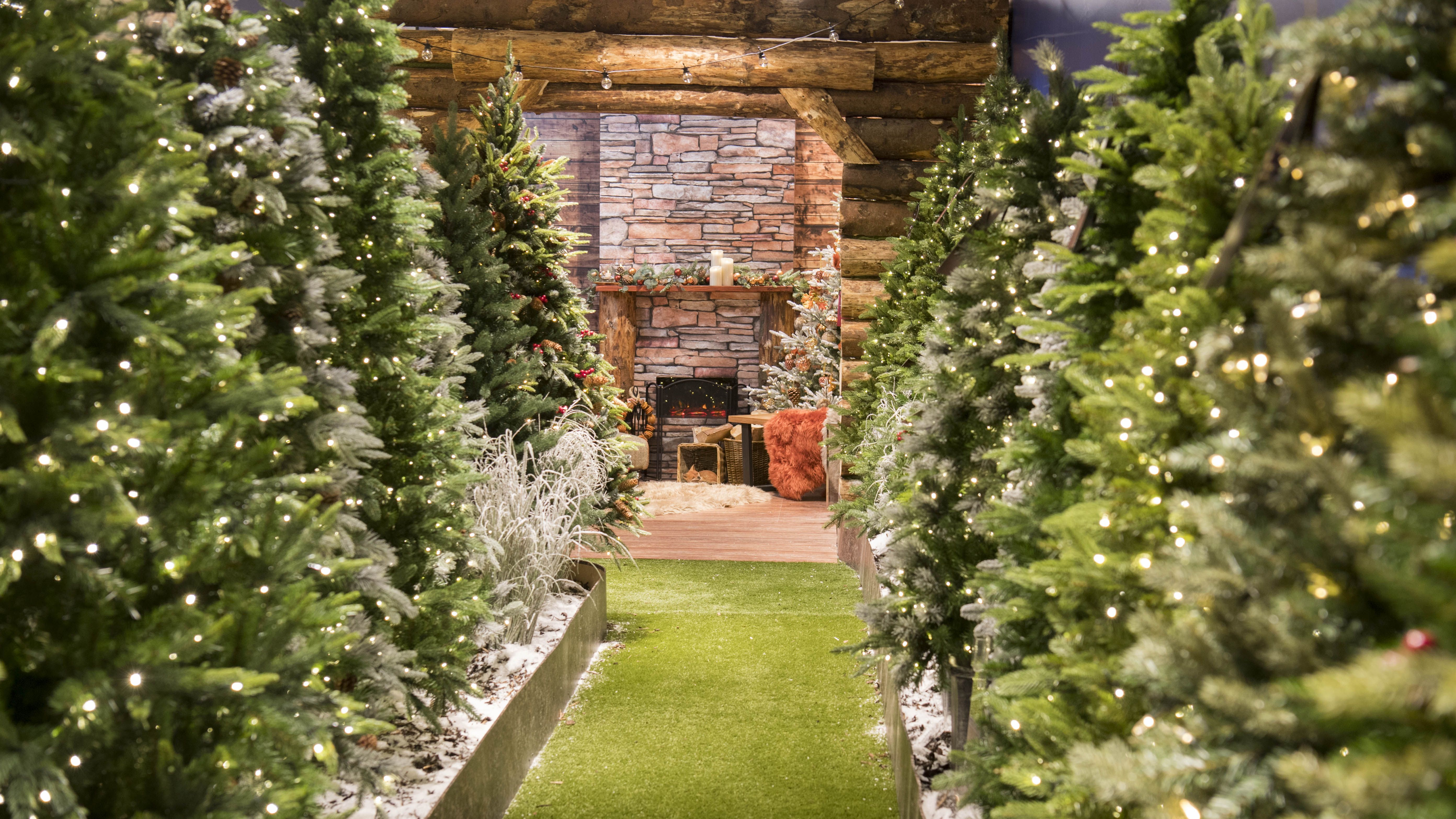 Christmas Forest.John Lewis Has Opened Its Christmas Shop Complete With A
