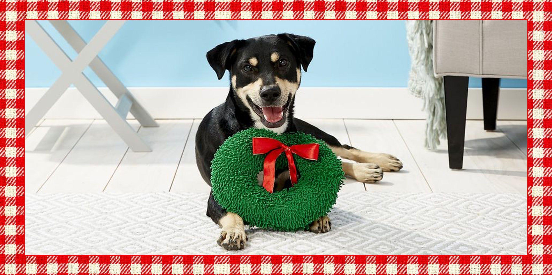 Pug dogs christmas 2019 gift