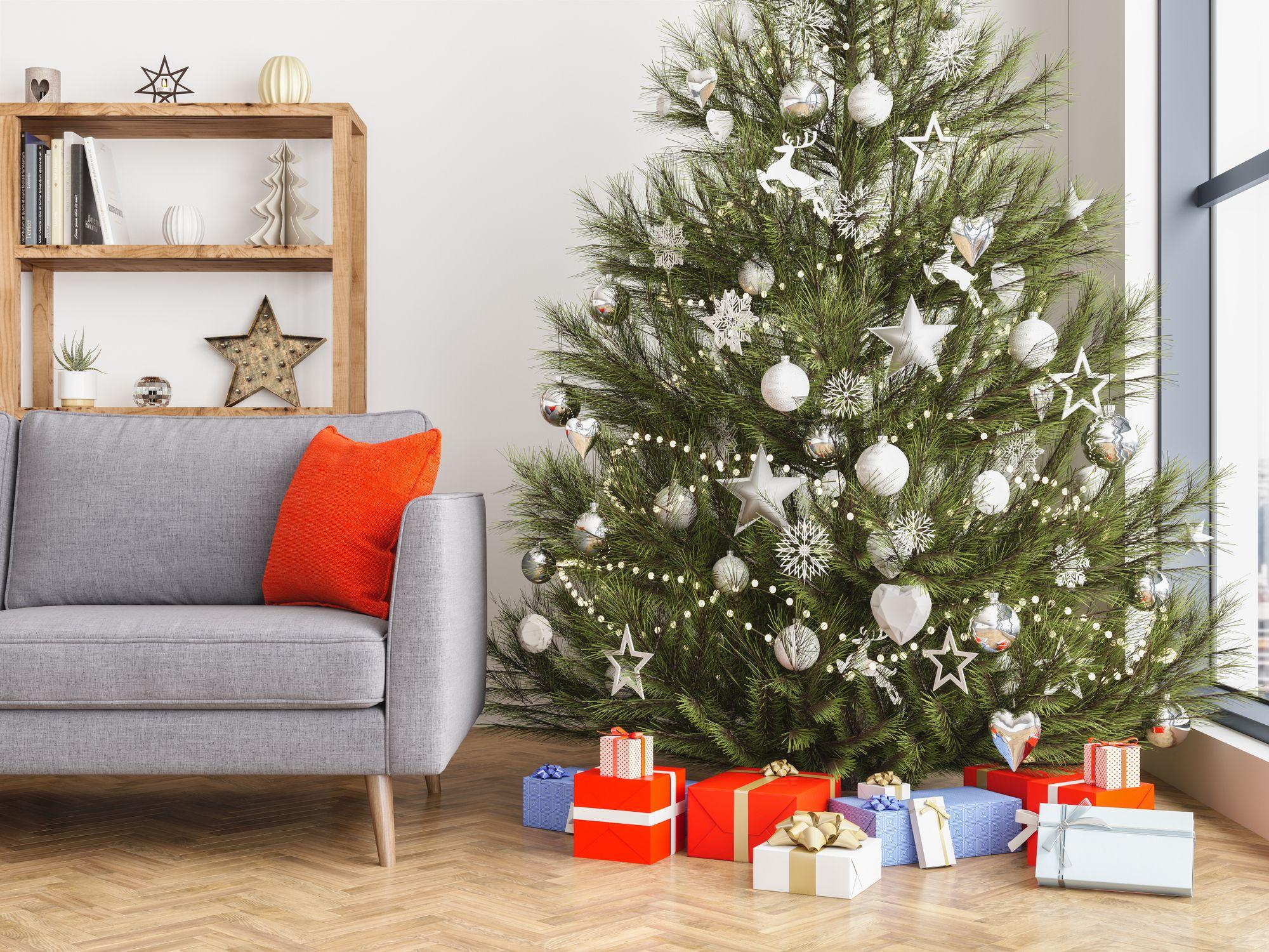 Christmas Tree Bug Warning 2020 Christmas Tree Bugs   How to Prevent Christmas Tree Bugs