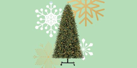 Christmas tree, Colorado spruce, White pine, balsam fir, Yellow fir, shortleaf black spruce, Tree, oregon pine, Pine, Christmas decoration,