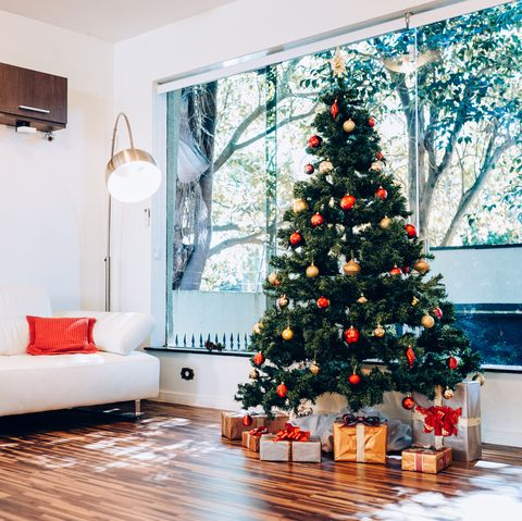Christmas Tree Recycle.How To Recycle A Christmas Tree Christmas Tree Disposal