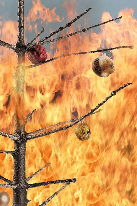 christmas facts -Christmas tree on fire