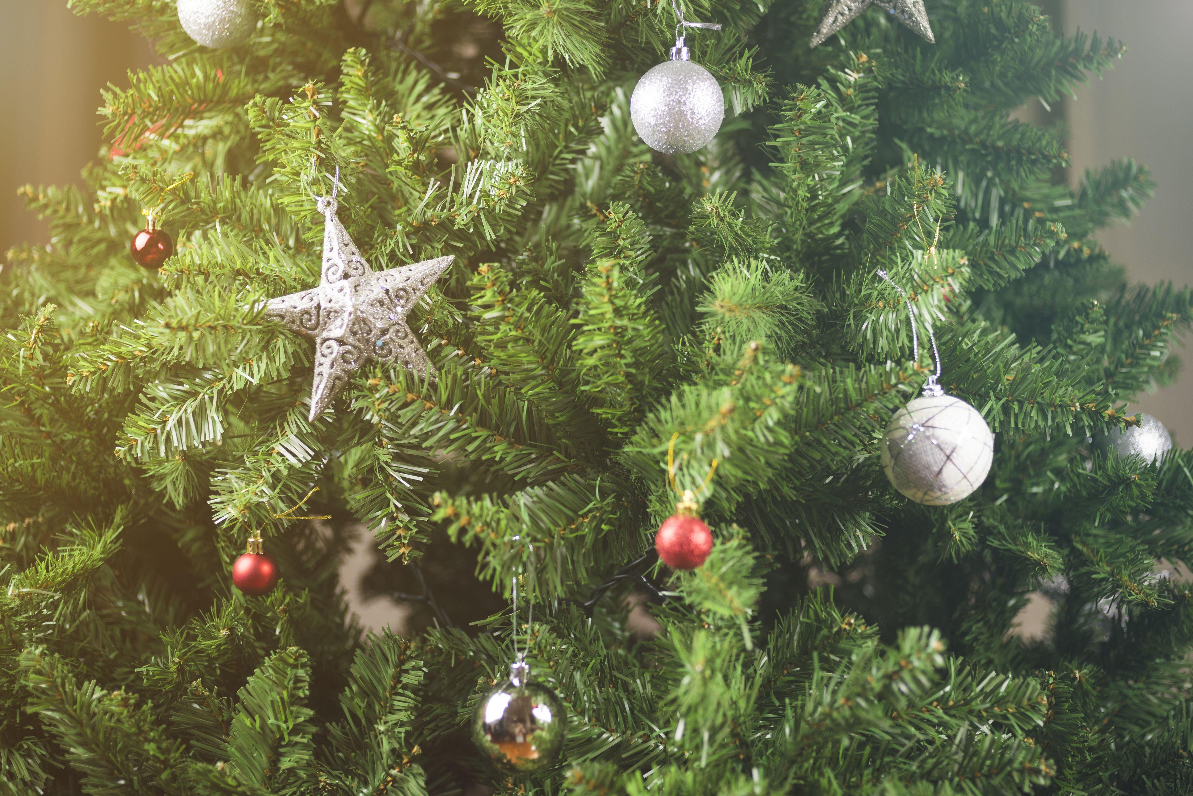 How to Keep Your Christmas Tree Fresh Longer