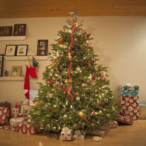 christmas symbol - Christmas tree surrounded by gifts