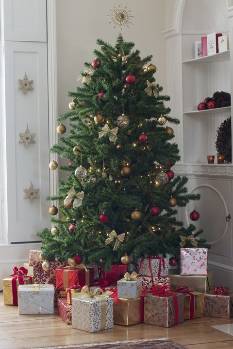 Does Mail Run On Christmas Eve.25 Surprising Christmas Facts Christmas Trivia You Should Know