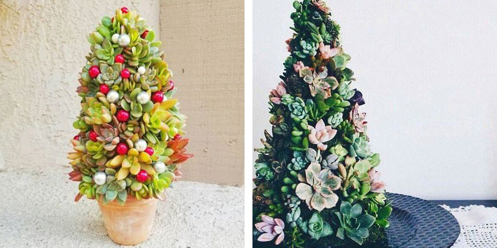 10 Ways To Decorate Succulents For Christmas