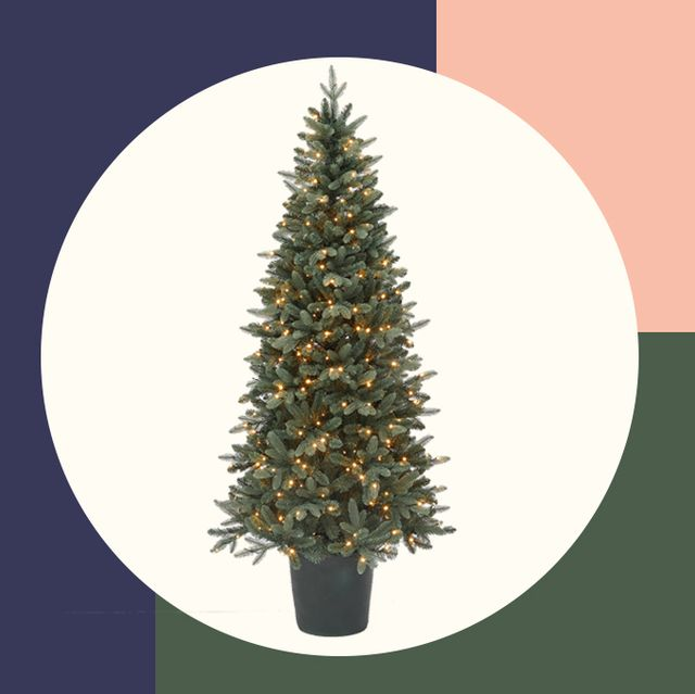 Images Of Christmas Trees.25 Slim Christmas Trees For Small Spaces Pencil Christmas