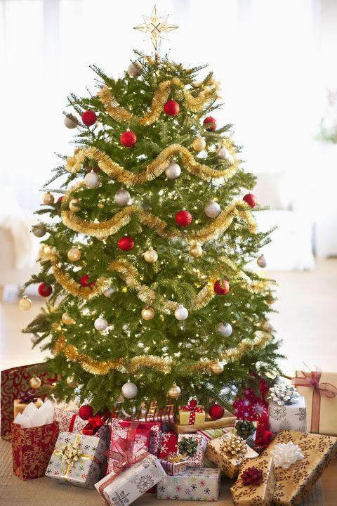 25 Best Christmas Trivia Questions - Holiday Fun Facts and Questions