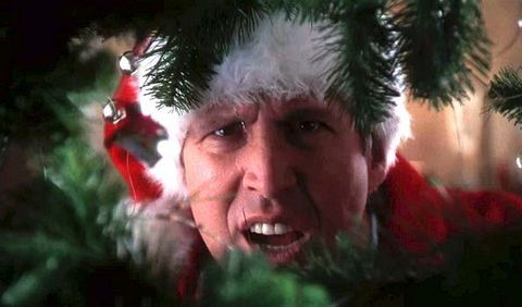 Christmas Vacation Quotes.National Lampoon S Christmas Vacation Movie Facts Cast