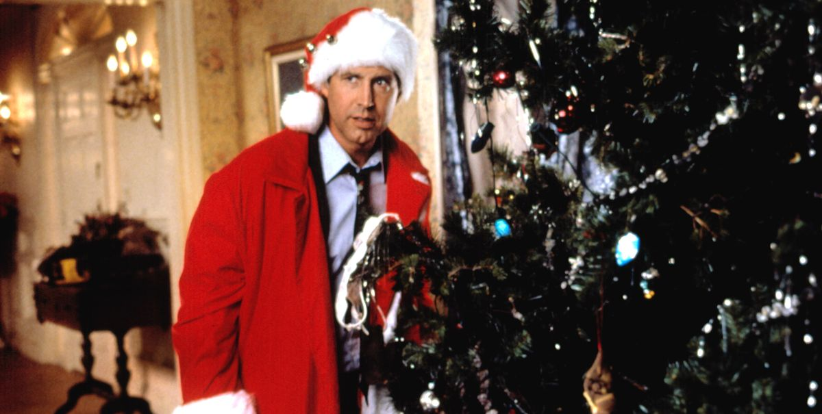 Quotes From Christmas Vacation.30 Best Christmas Vacation Quotes Funniest National
