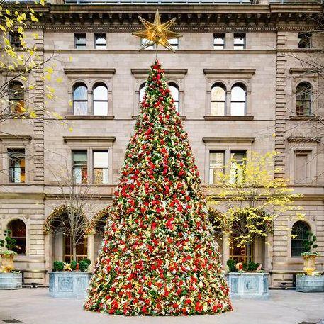 クリスマスツリー、ホテル