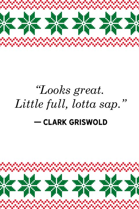 Griswold Christmas.30 Best Christmas Vacation Quotes Funniest National