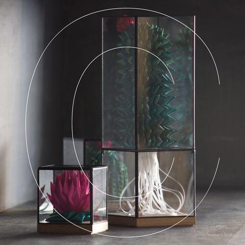 Display case, Glass, Furniture, Still life photography, Architecture, Shelf, Rectangle, Art,