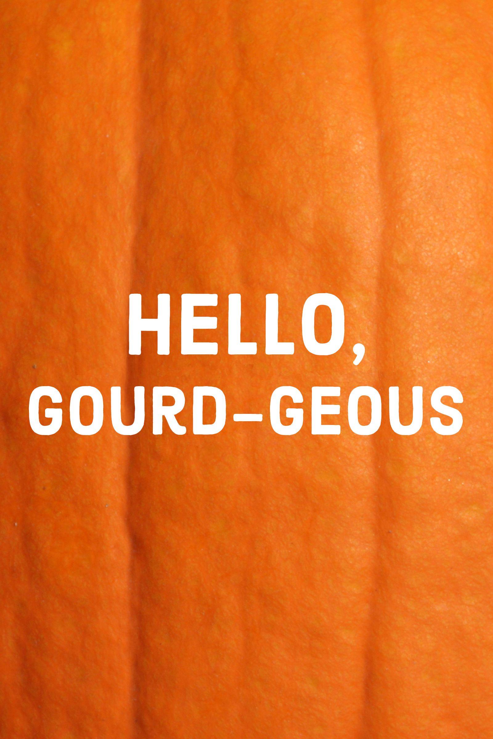 pumpkin quotes andpuns hello gourd-geous