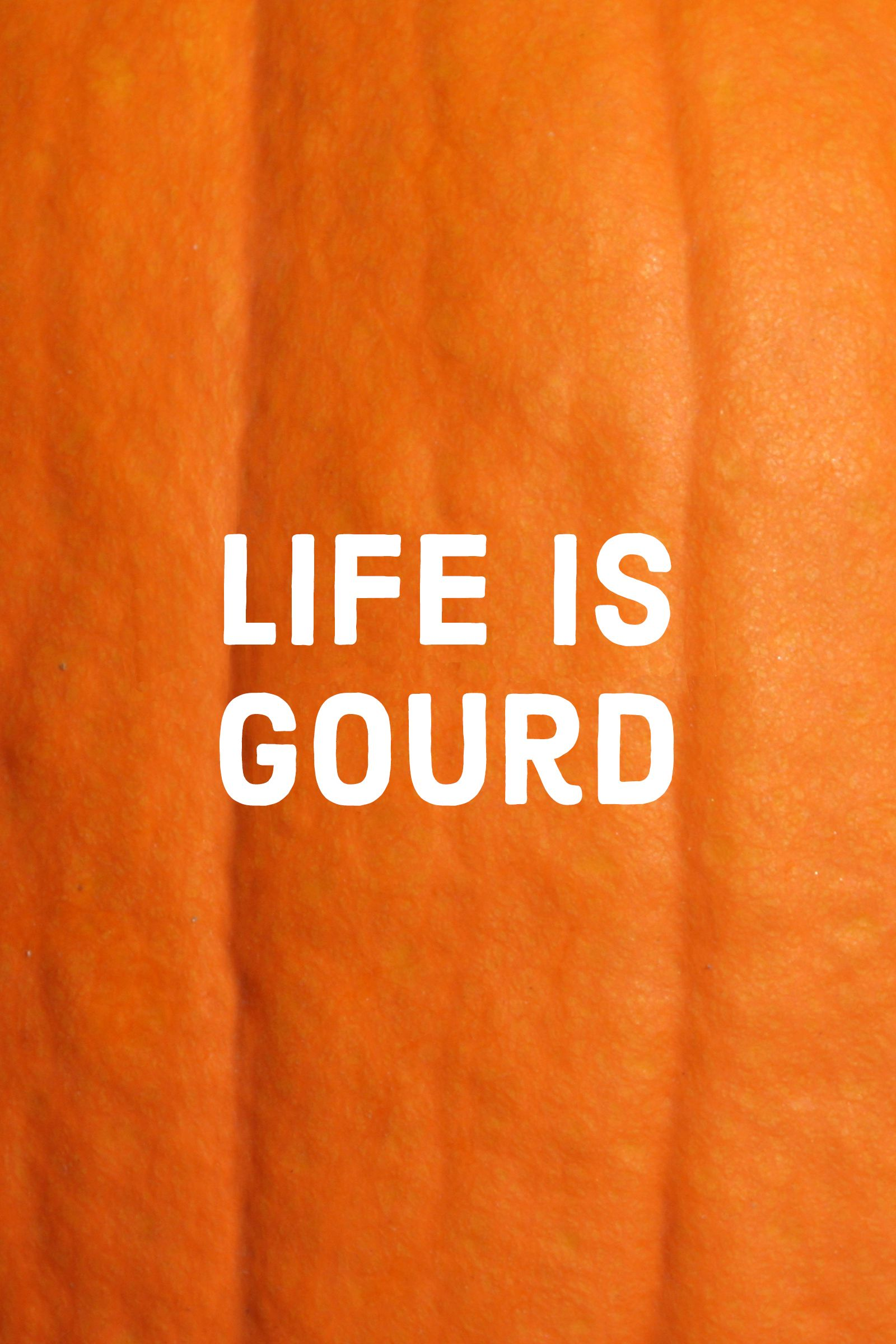 pumpkin quotes andpuns life is gourd