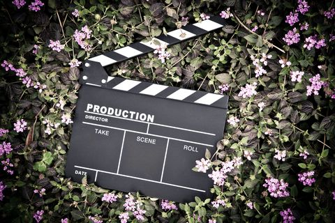 clapper board isolated on lawn