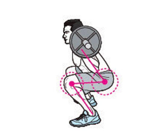classic squat