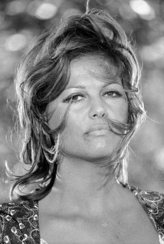 Claudia Cardinale oggi e ieri, tra età e figli in 40 bellissime foto