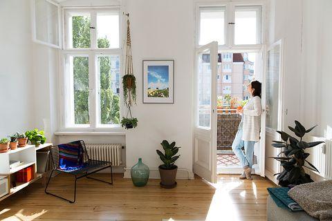 Imagen de salón con plantas