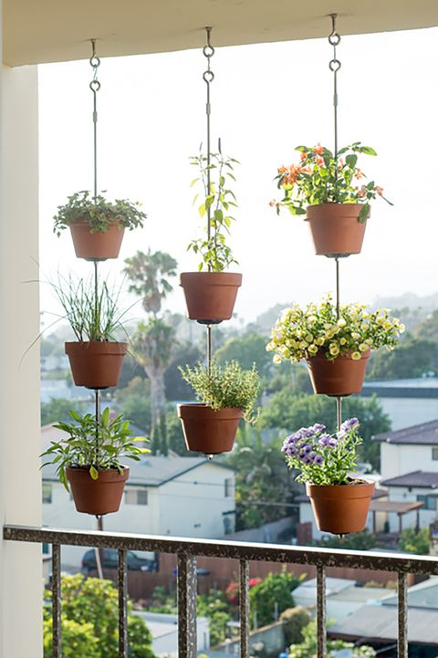 clay pot vertical garden - Wall Garden