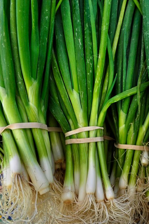 Close-Up Of Green Onions