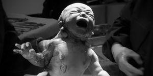 alumbramiento, la fase final del parto