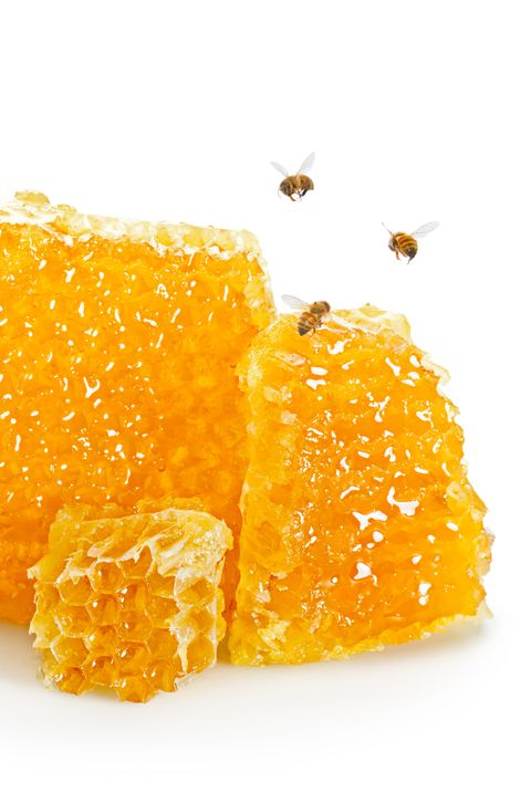 Close-Up Of Honeycomb Against White Background