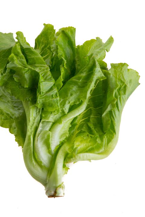 close up of lettuce against white background