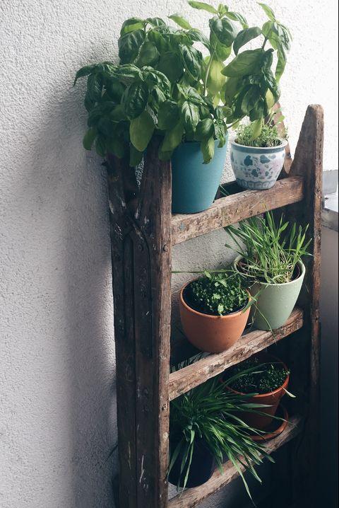 20 Brilliant Vertical Garden Ideas Interesting Vertical