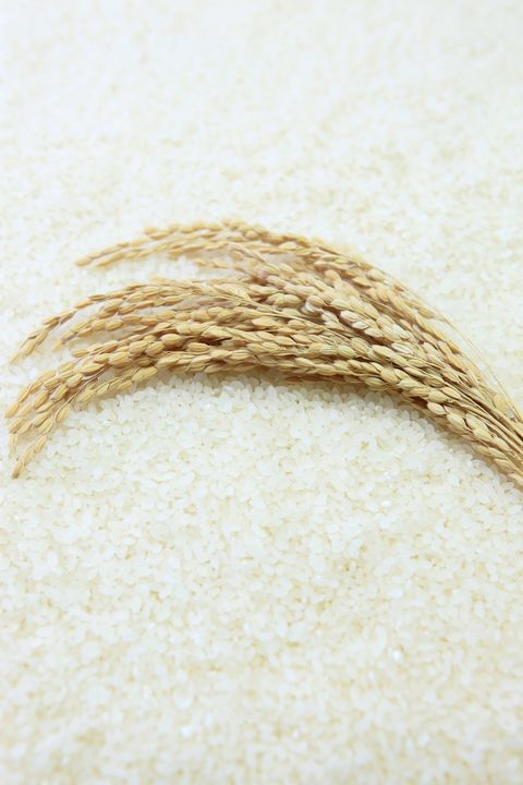 close up of uncooked rice
