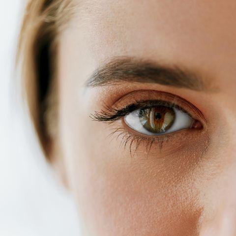 eyelash lice