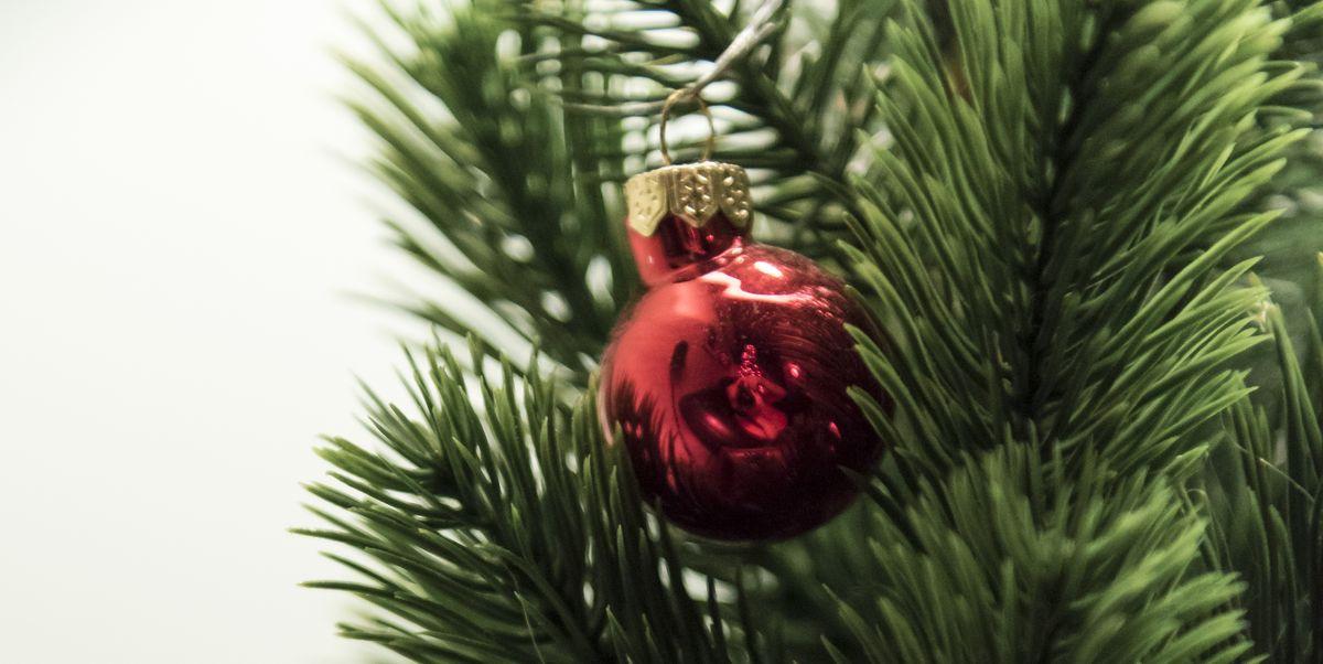 Should I Buy A Fake Or Real Christmas Tree?