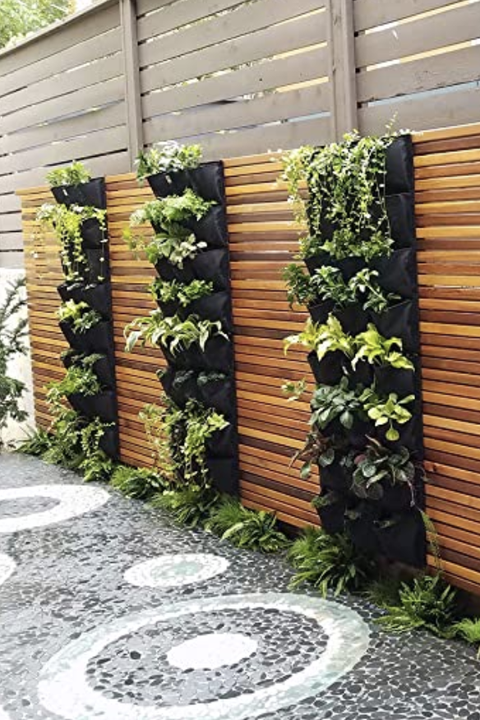 15 DIY Vertical Gardens That