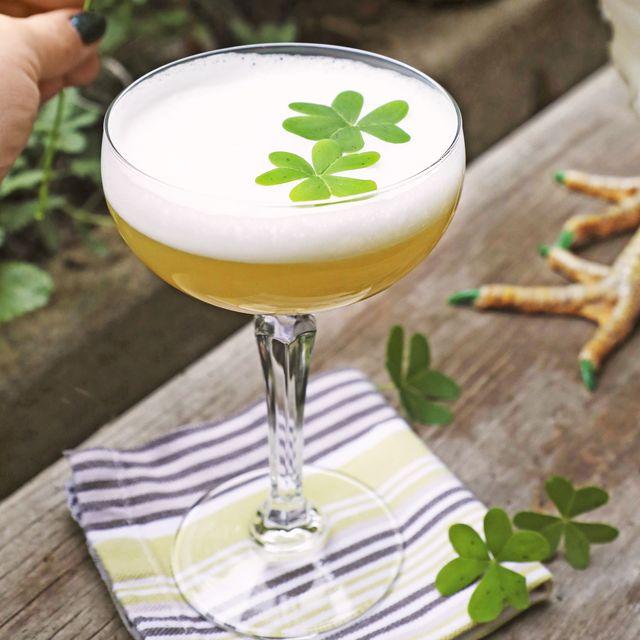 clover whiskey sour recipe