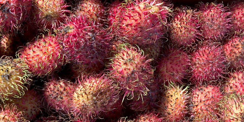 10 Exotic Fruits To Try About Exotic Fruit