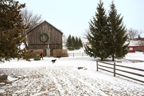 ontario farmhouse christmas