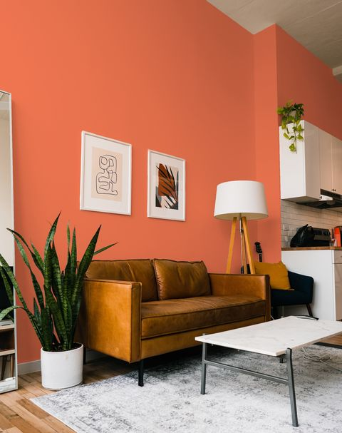 urban outfitters launches first paint range
