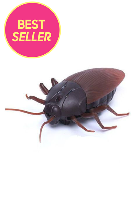 Remote-Controlled Fake Giant Cockroach
