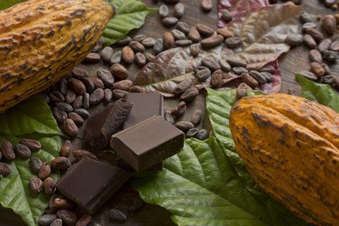 Cocoa composition